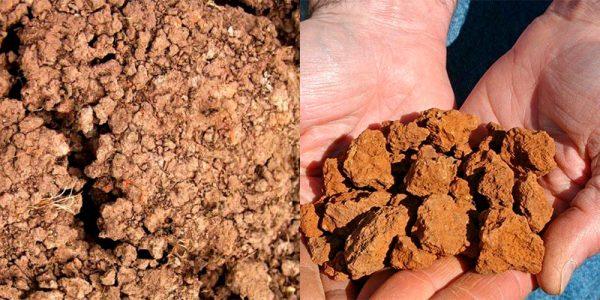 Виды глинистого грунта